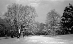 Winter in Ramersdorf 3