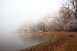 fog and rime on the lake