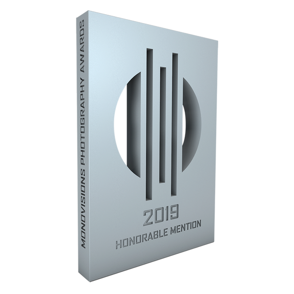 monovisions awards 2019 hm